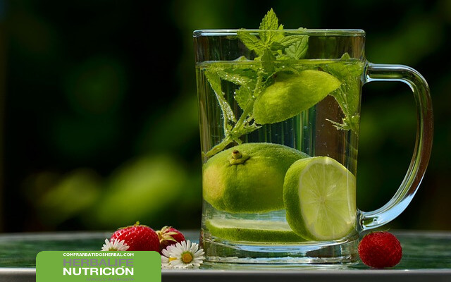Metodo adelgazar herbalife tea