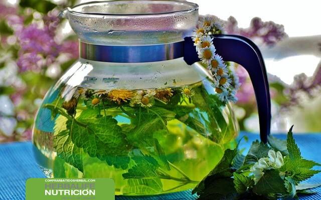 Beneficios de las infusiones medicinales para eliminar la grasa abdominal