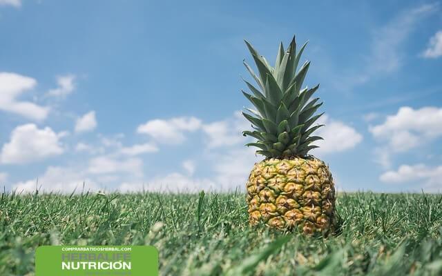 Dieta de la piña y el aloe vera para adelgazar